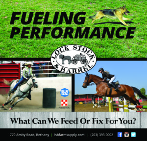 Fueling performance for all feed and fix it needs and desires - Lock Stock and Barrel in Bethany, Connecticut.