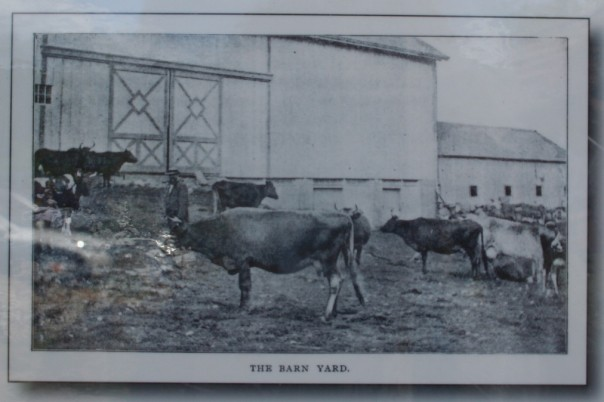 Vintage photograph of the farm and barn.