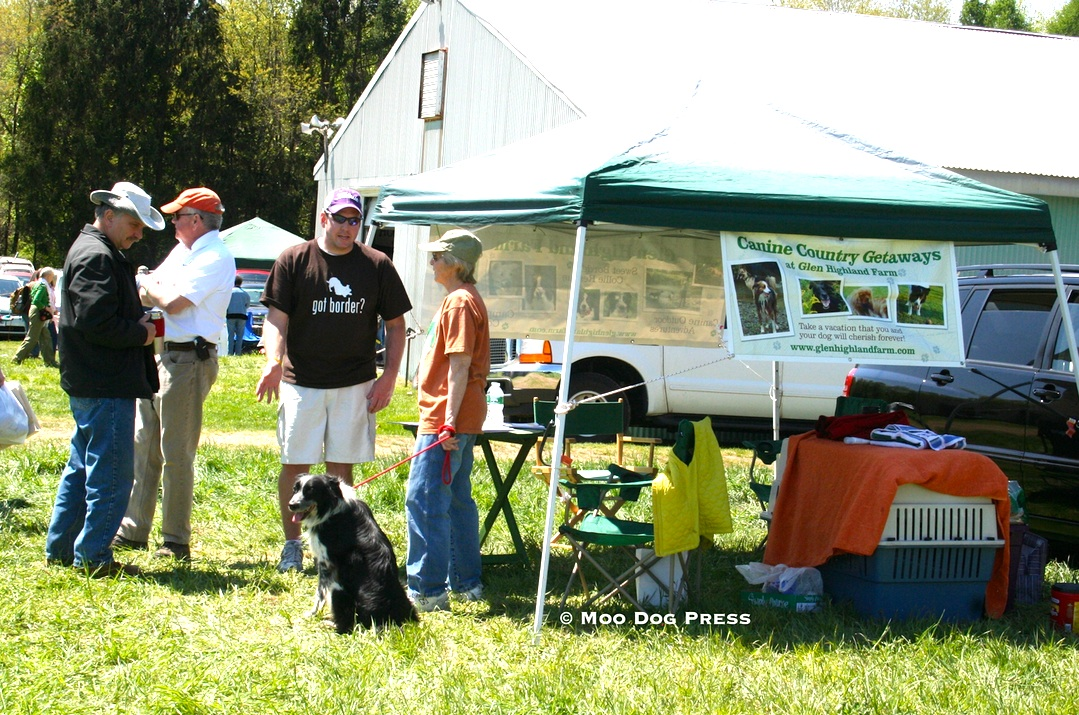 Talking dogs at an event. The vendor offers pet vacations and boarding. Border collies are working dogs, but can adapt to being pets. TW/MDP