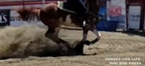 A portion of a video of the action at the gymkhana, Goshen Stampede. AGH/MDP