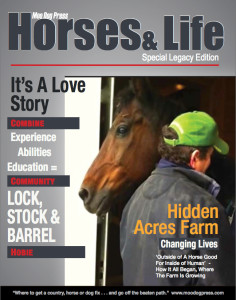 Horses and Life Legacy edition.
