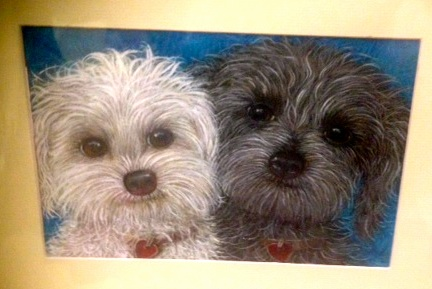 Custom pet portrait for Sally Farrell by artist Nancy Hollenbeck-Dyson.