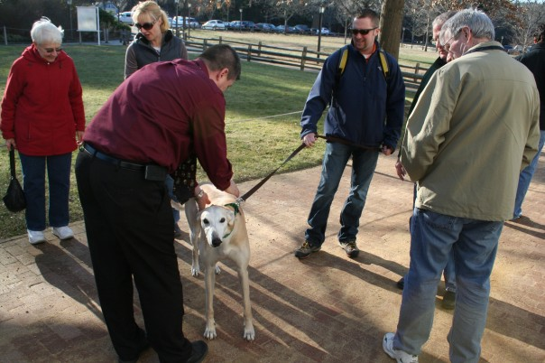 Social community with dogs at center, Moo Dog Press Magazine.