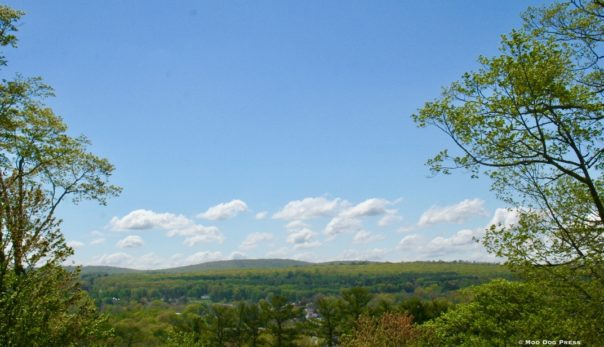 Panoramic views from the summit of Indian Hill.